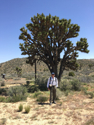 Travel blog image for April 13, 2017 in Joshua Tree National Park, CA