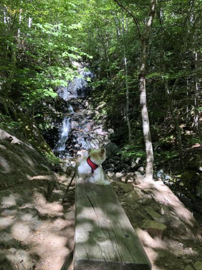 Travel blog image for Sept. 16, 2018 in Pleasant Bay, Nova Scotia