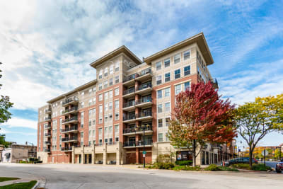 STUNNING 2 BED 2 BATH CONDO IN THE HEART OF DES PLAINES