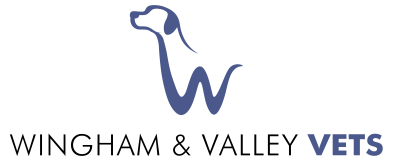 Wingham and Valley Vets
