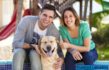 happy couple with yellow labrador retriever