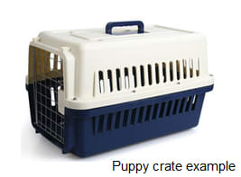 puppy crate example