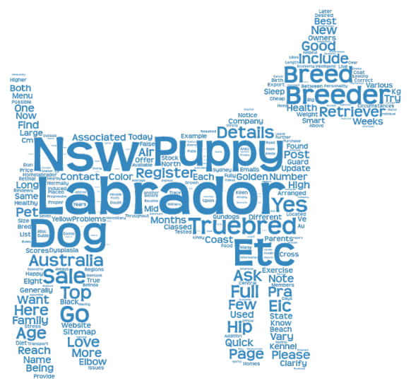 Word tag for Labrador breeders in NSW Australia