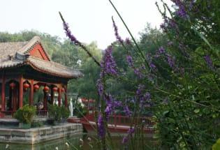 何兆武:也是故乡,北京