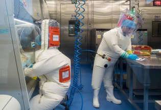 美国官员敦促中国允许其与武汉实验室直接合作 以研究新冠病毒