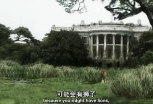 纪录片《人类消失后的世界》