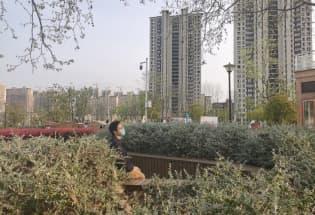 饭桌上的争吵:当中国年轻人在疫情期间与父母谈政治