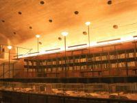 林语堂:读书的艺术