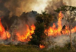 巴西总统称亚马逊大火可能是NGO所为