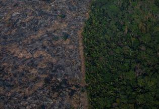 必须联合起来挽救亚马逊热带雨林