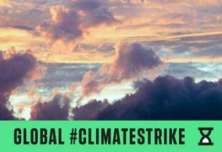 生态系统再生可能是最安全的解决气候问题的方法