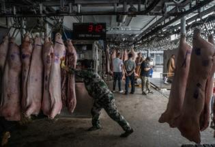 """4个问题,带你了解中国的""""战略猪肉储备"""""""