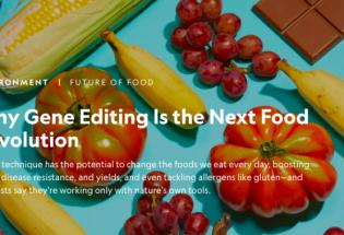 从转基因到基因编辑,未来它们将是餐桌上必不可少的食物
