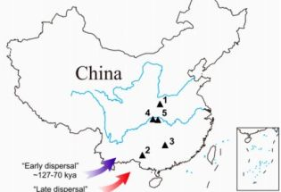 最新证据:现代人来华南不超6万年