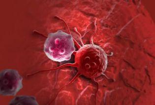 科学家终于撬动了癌症治疗的硬骨头