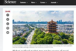 《科学》杂志:武汉华南海鲜市场可能并非病毒发源地