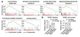 大规模筛查揭示出潜在的抗SARS-CoV-2药物