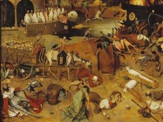 重塑人类历史的鼠疫,到底来自哪里