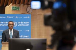 世卫组织成员国同意就其疫情应对进行调查