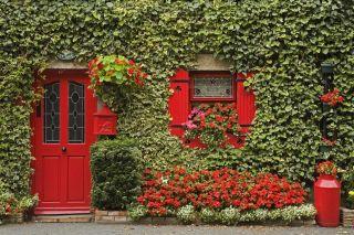 享宁静之美 诗情画意爱尔兰