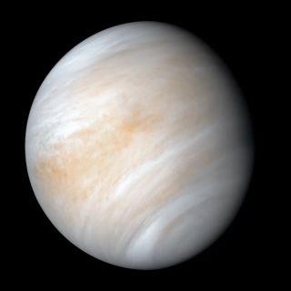 """印度科学家称在金星大气中发现""""生命基因物质"""""""