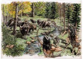 科学家发现新石器晚期青藏高原东北部存在热带大型哺乳动物