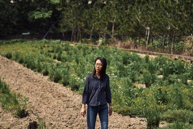郭玉翎和她的生意伙伴庄正灯通常在租赁土地上种植作物。
