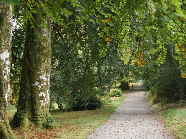 Scotland Paths