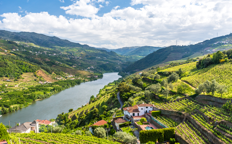 Portugal Douro River Cruise
