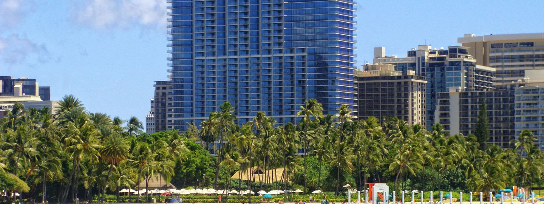Trump Waikiki Hotel & Palm Trees