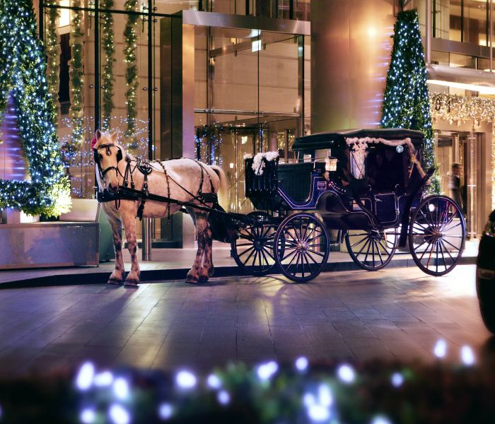 Event - Magnificent Mile Lights Festival