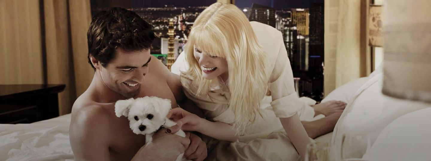 Couple in Hotel Room with Puppy