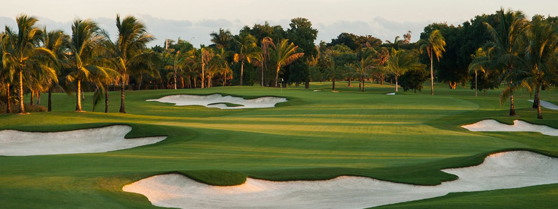 Blue Monster Golf Course Hole 6