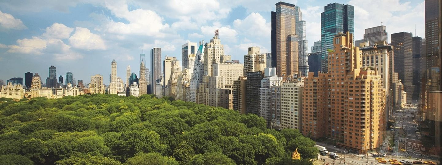 View Overlooking Central Park