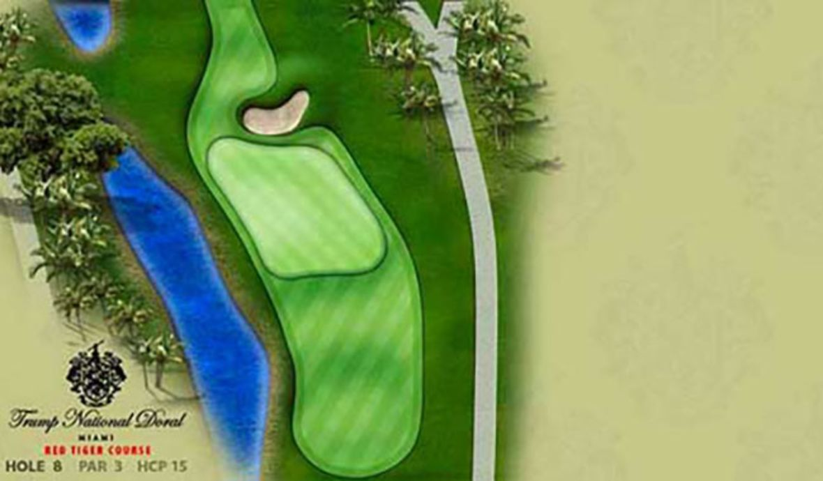 red tiger course hole 8 green
