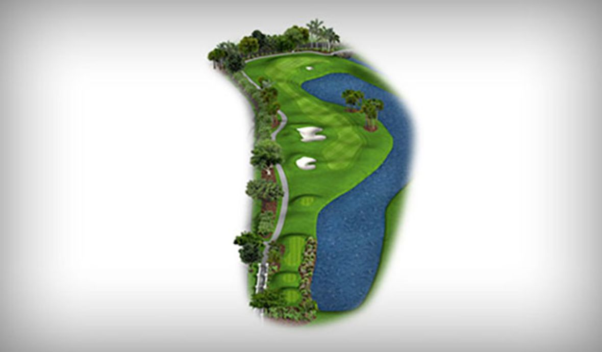fairway map