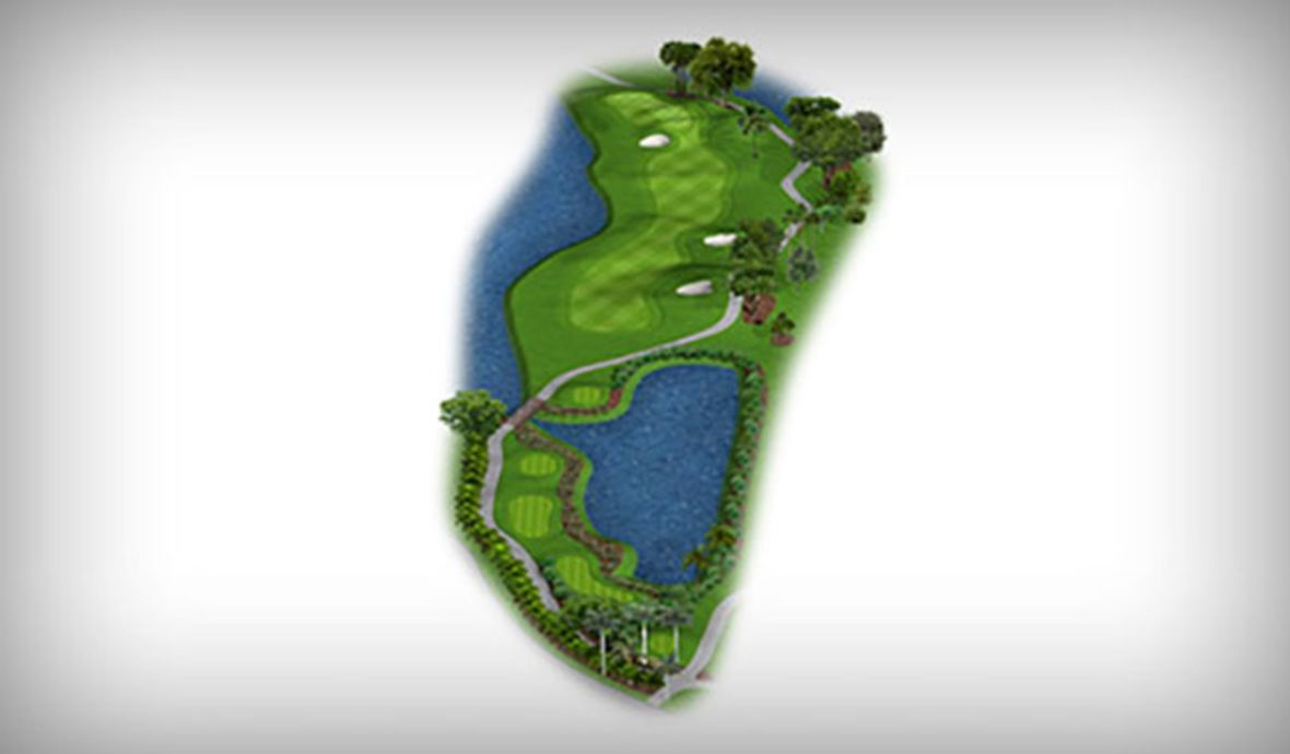 golf fairway map