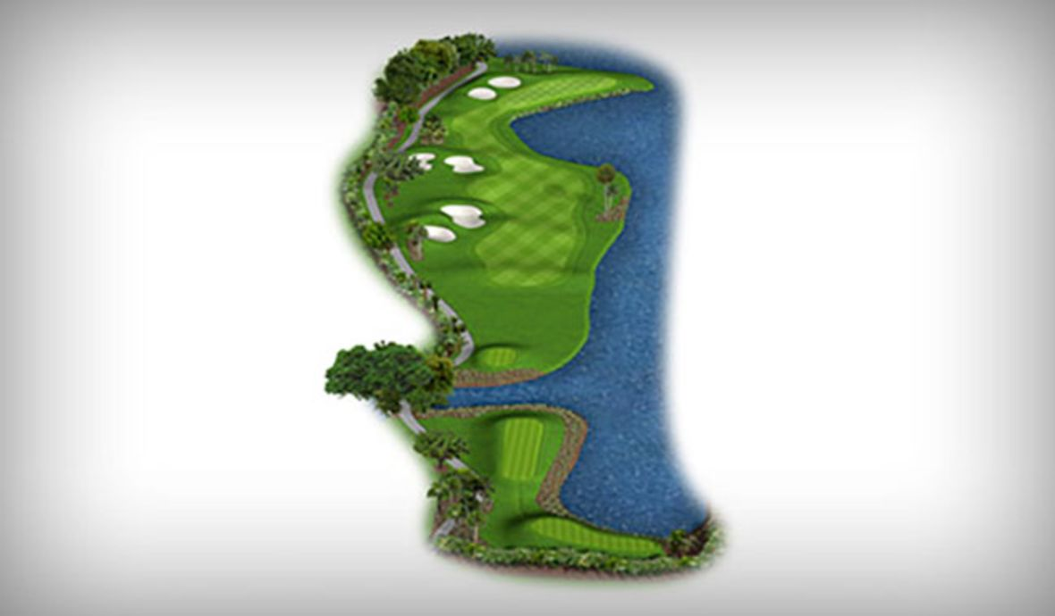 golf course fairway map digital