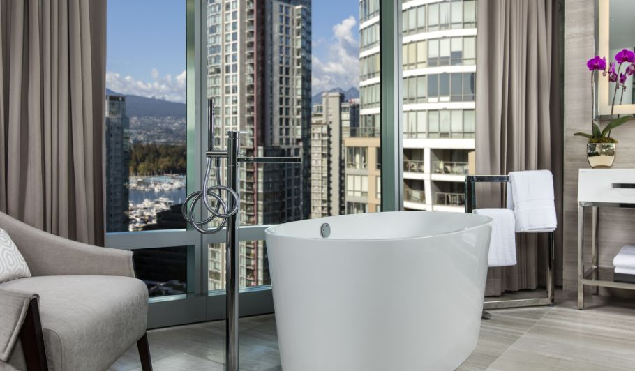 hotel interior bathtub area with city view