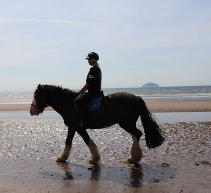 horseback riding at trump turnberry