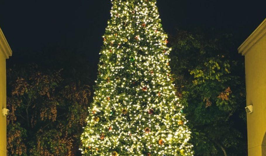 Event - Holiday Glittering Lights
