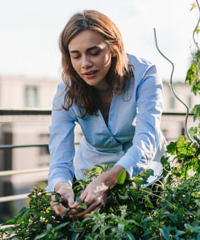 How to Live a More Sustainable Lifestyle