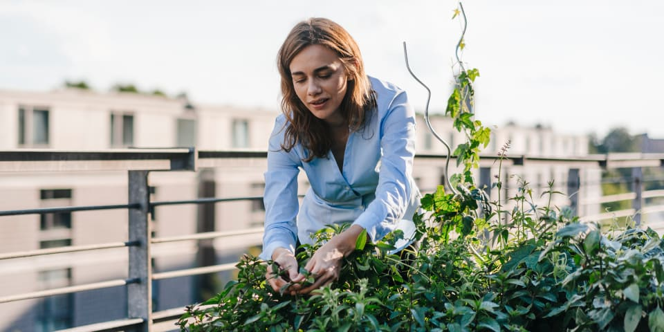 Women gardening to show how to live sustainably