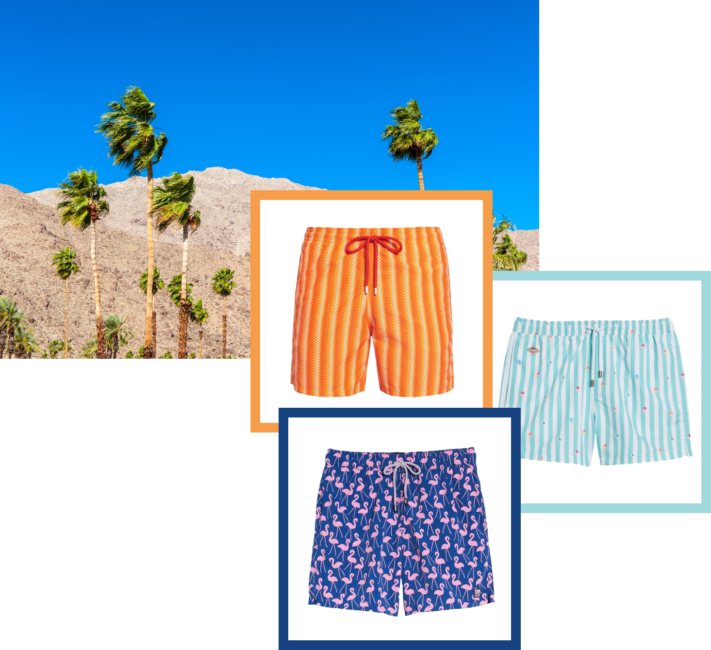 Swimsuits inspired by Palm Springs