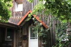 House sit in Bremen, Germany