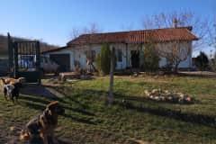 House sit in Dalgopol, Bulgaria