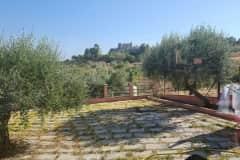 House sit in Motta Sant'Anastasia, Italy