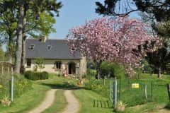 House sit in Fougerolles-du-Plessis, France