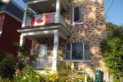 House sit in Ottawa, ON, Canada