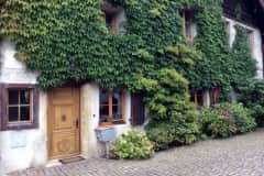 House sit in Genève, Switzerland